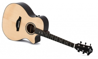 Sigma Guitars GZCE-3