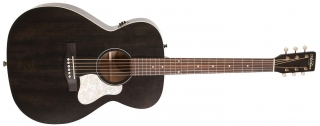 -20% ART & LUTHERIE Legacy Faded Black QIT